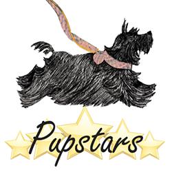 Pupstars logo header